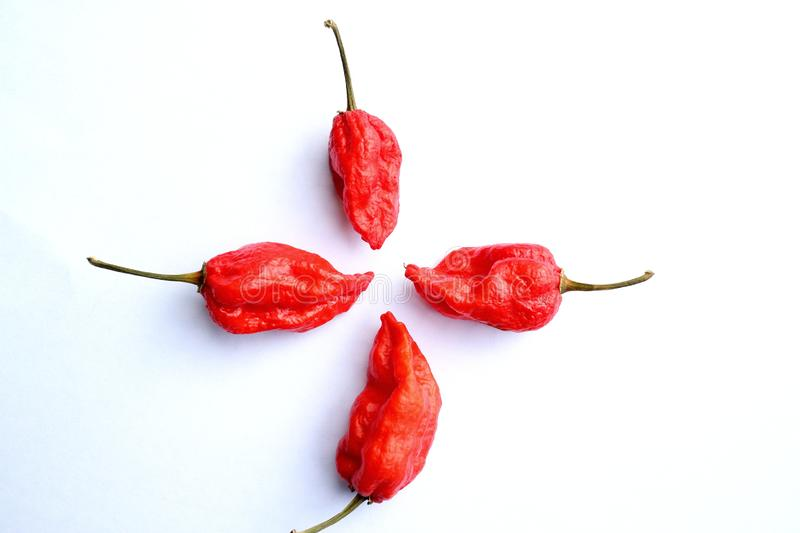 Four habanero stock photos