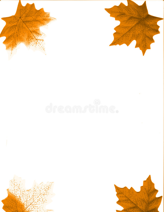 Four leaves. An autumn design background with leaves of fall colors royalty free illustration