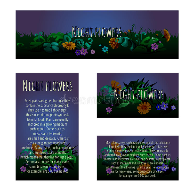 Four magic cards with floral ornament royalty free illustration