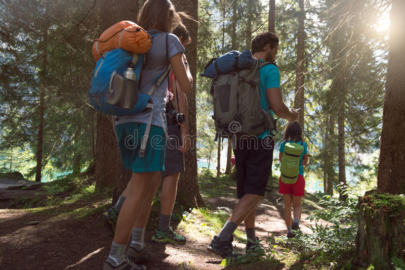 Four man and woman walking along hiking trail path in forest woods during sunny day. Group of friends people summer stock photo