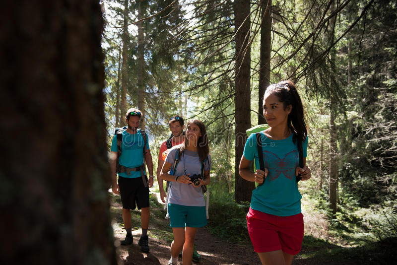 Four man and woman walking along hiking trail path in forest woods during sunny day. Group of friends people summer stock photos