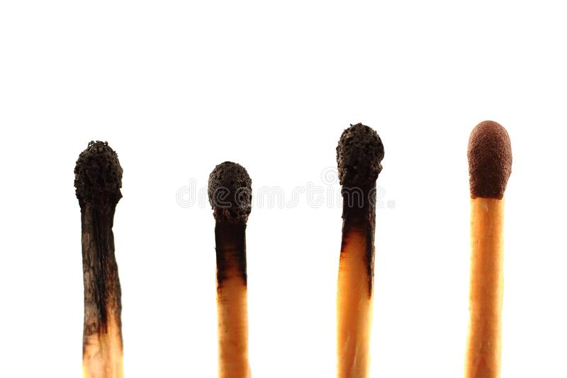 Four matches against a white background stock photo