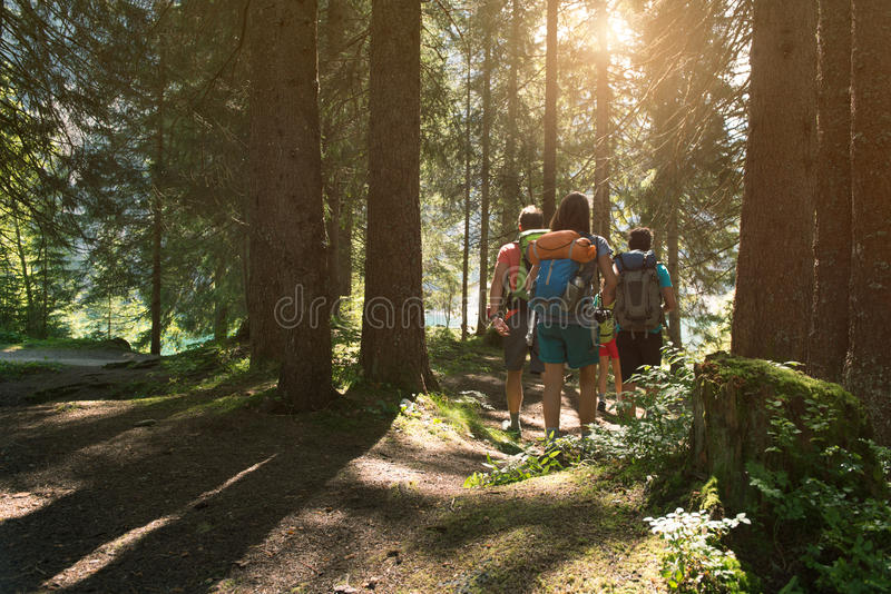 Four man and woman walking along hiking trail path in forest woods during sunny day. Group of friends people summer royalty free stock images