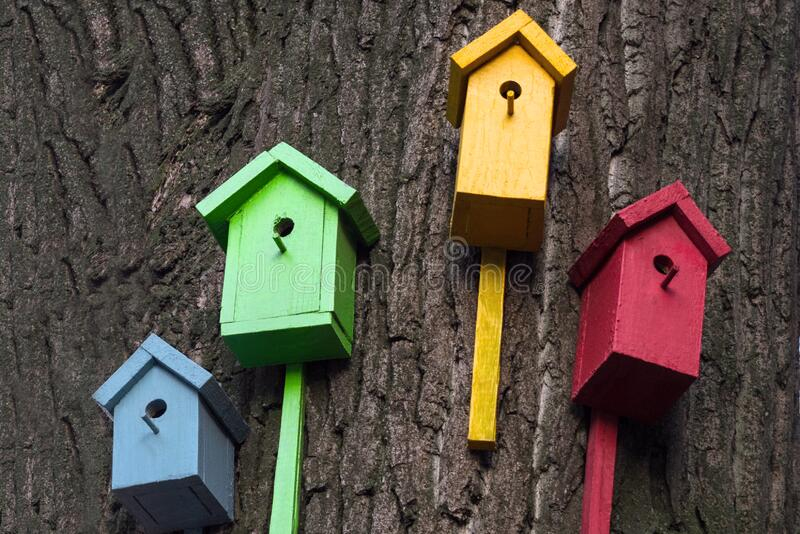 Four multi-colored birdhouse is on a big tree. Colored bird houses nailed to the trunk of a tree. Nature conservation concept.  royalty free stock photography