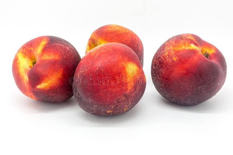 Nectarines. Four Nectarines against a White Background royalty free stock images