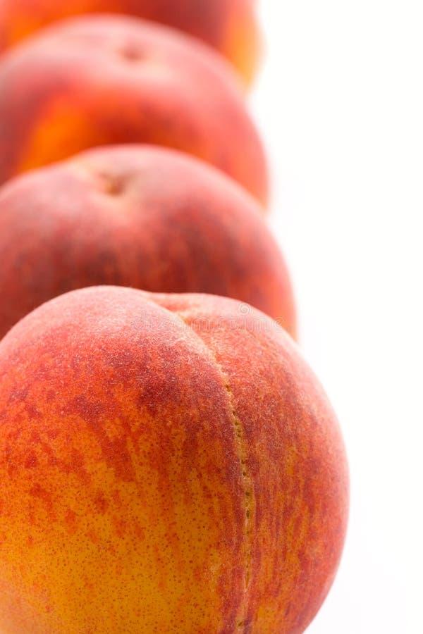 Download Four peaches stock image. Image of bright, fruit, orange - 10119951
