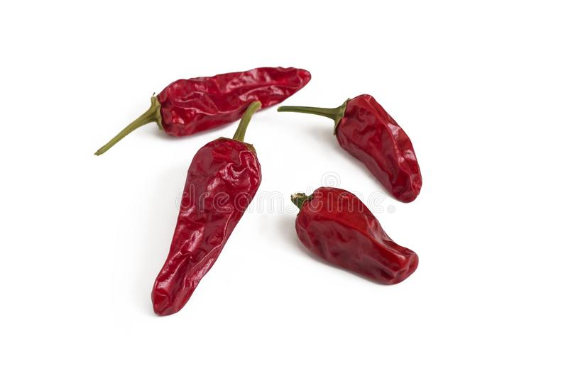 Four pods of red hot chili peppers isolated on white background stock photo