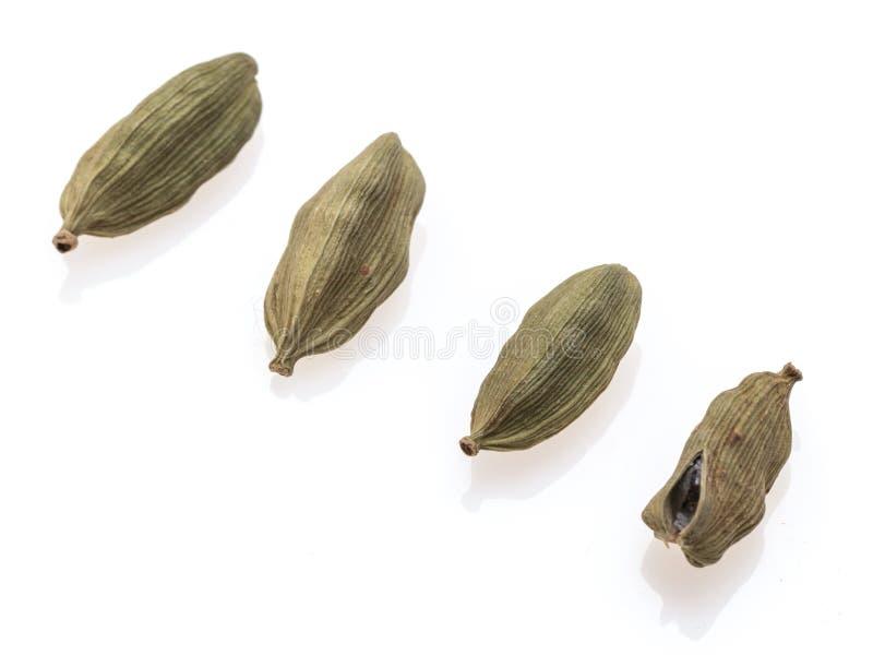Four pod of cardamom royalty free stock image