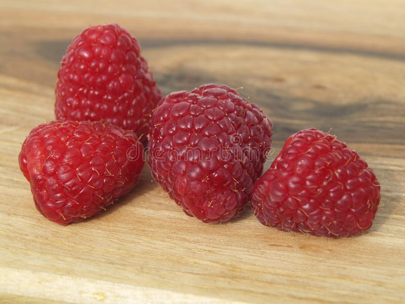 Four Raspberries. Four red Raspberries on a wooden Board stock photography
