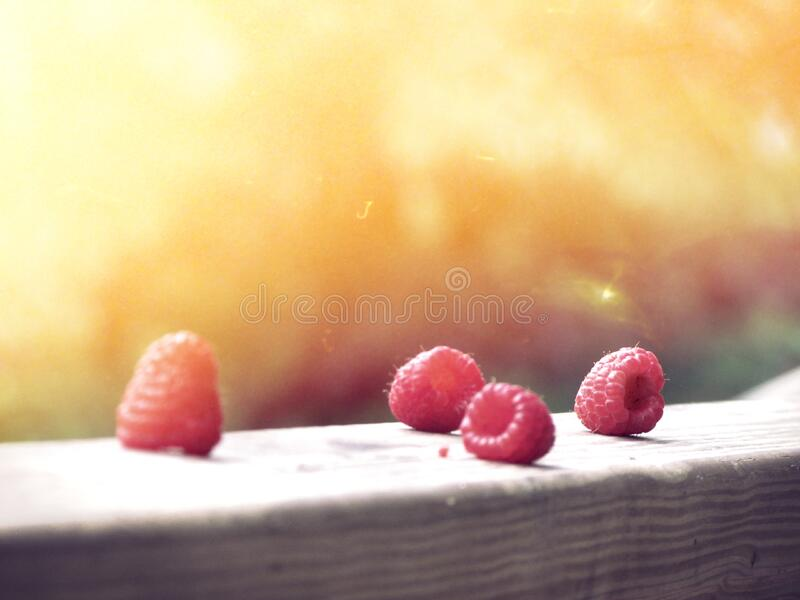 Four Red Raspberries Free Public Domain Cc0 Image
