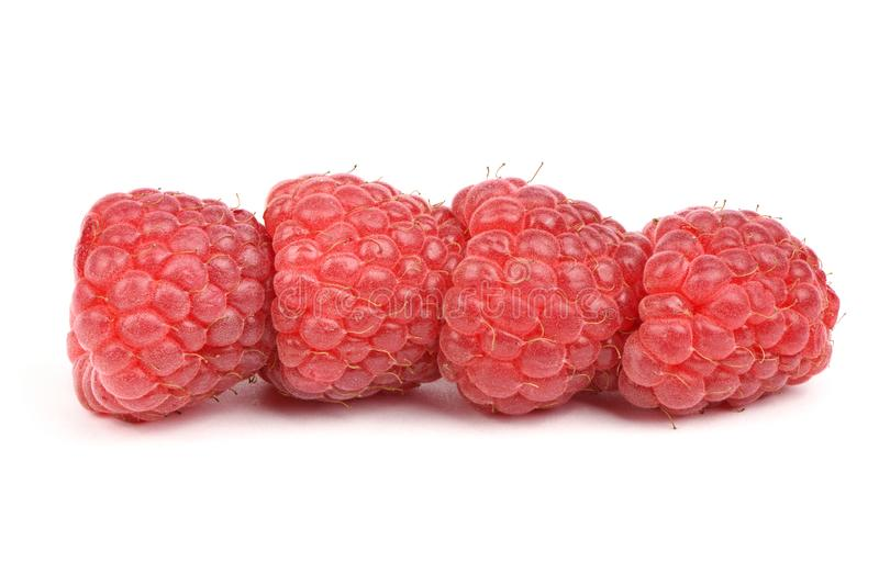 Four red raspberry berries. Isolated on white background. High resolution photo. Full depth of field stock images