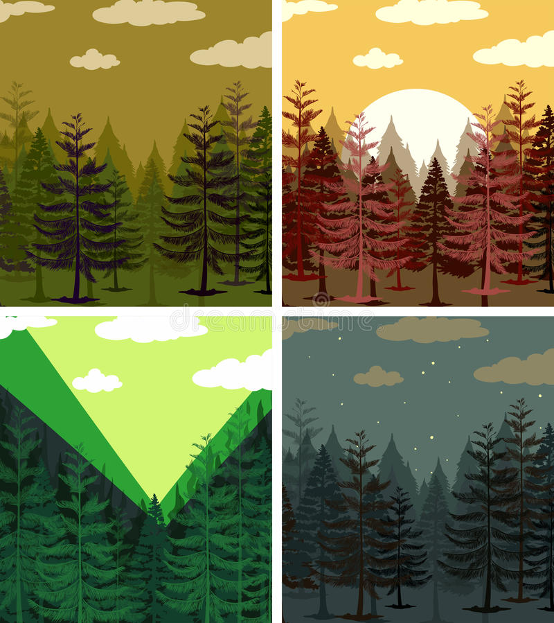 Four scenes of pine forests vector illustration