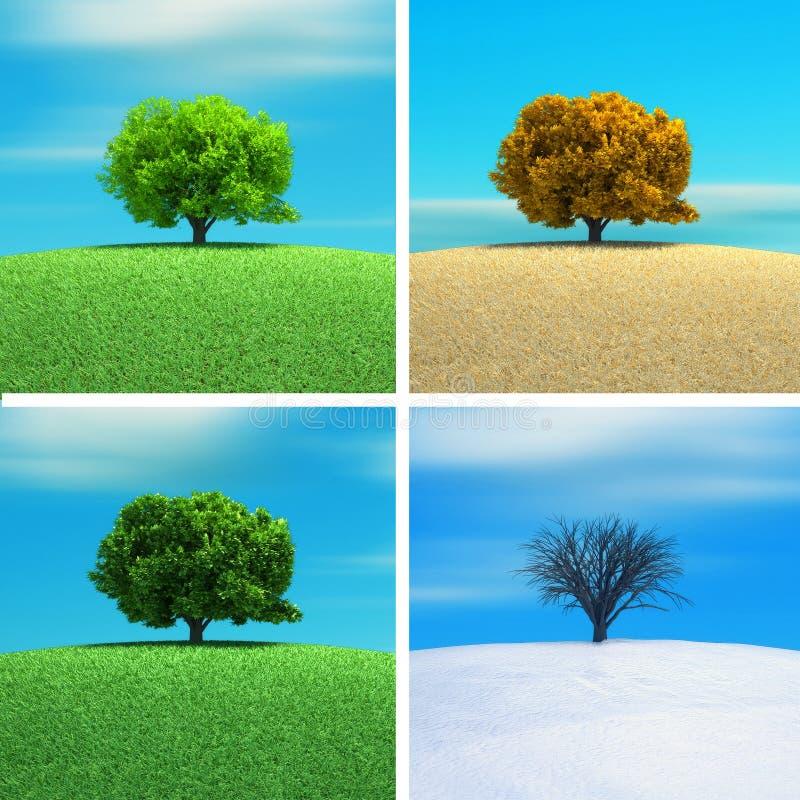 Four season. A tree in four season - 3d render stock illustration