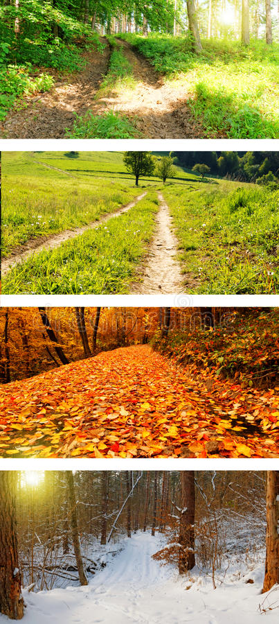 Four season wild roads royalty free stock photography