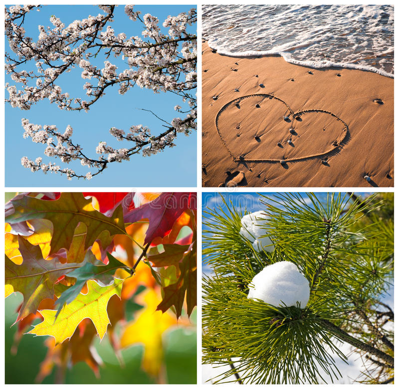 Free Four Seasons Collage Royalty Free Stock Photography - 34838317