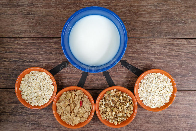 Four small bowls with different cereals and bowl with milk, business strategy, decision making, choice. royalty free stock photography