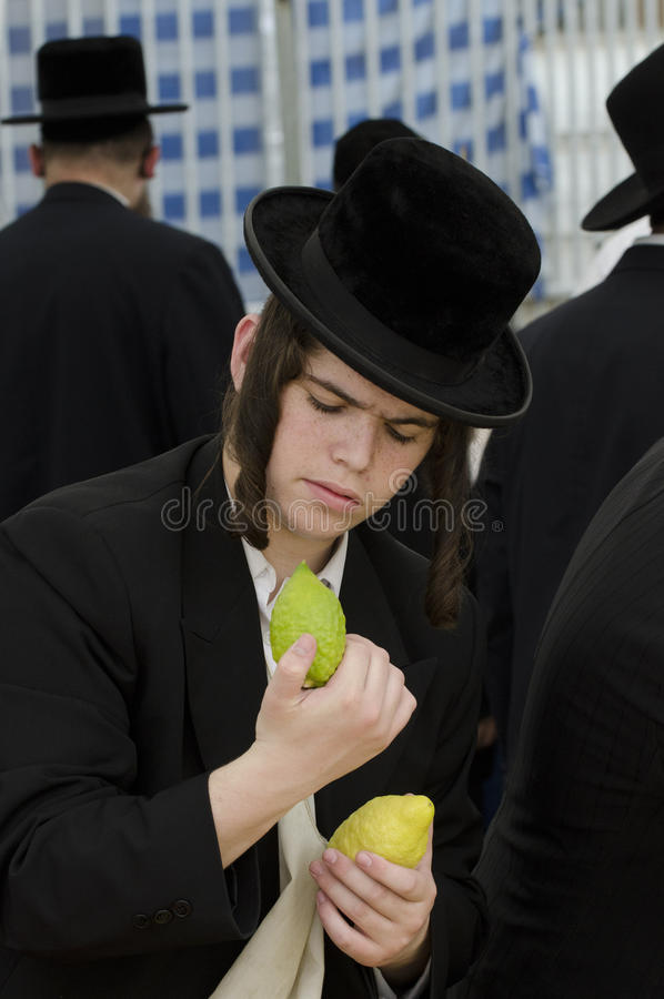 Four Species Market for Jewish Holiday of Sukkot royalty free stock image