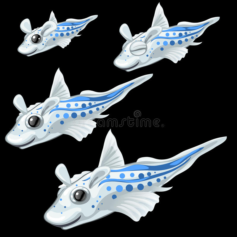 Four tropical white fish on a black background royalty free illustration