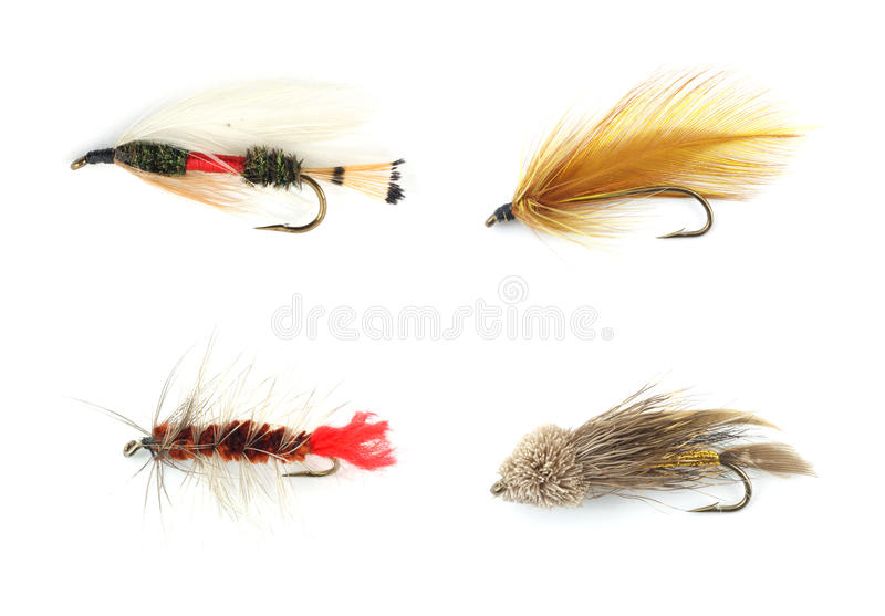 Four trout flies. Four different colorful trout flies against a white background stock image