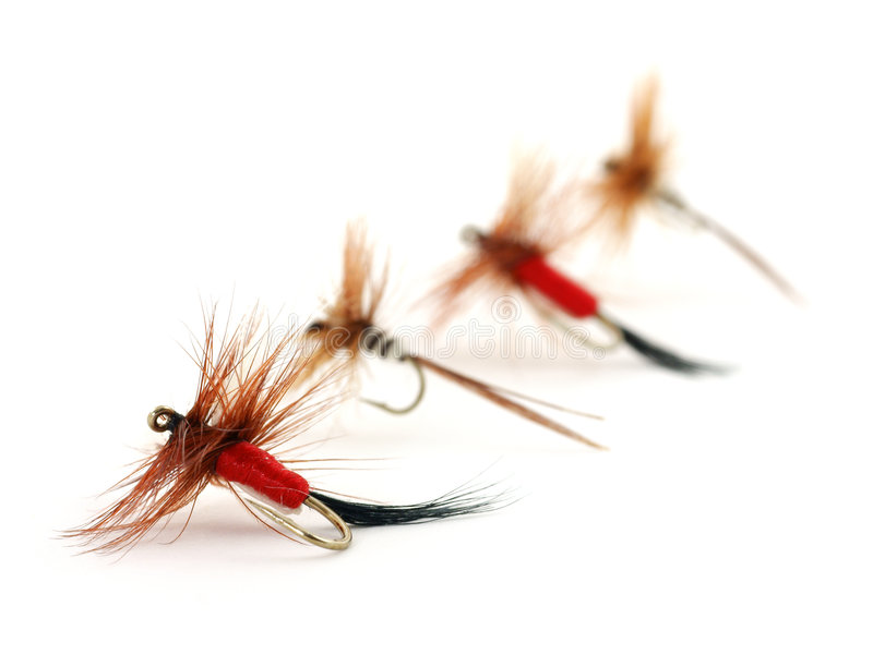 Four trout flies. Image of four very small fly fishing flies with the first one in focus then the rest trailing into a blur royalty free stock photo