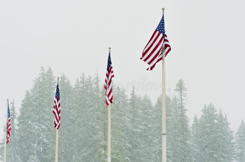 Four US Flags wave in falling snow stock photo