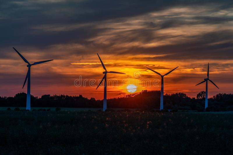 Four wind turbines on a field against a golden sunset royalty free stock images