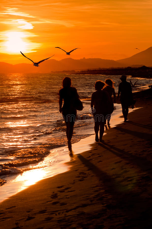 Free Four Young Women Silhouette Royalty Free Stock Photo - 23166485