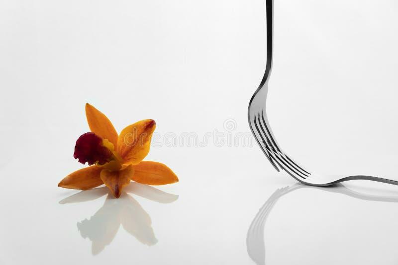 Fourchette argentée pour le wagon-restaurant de nourriture et réflexion orange rouge de fleur d'orchidée sur le fond blanc photos stock