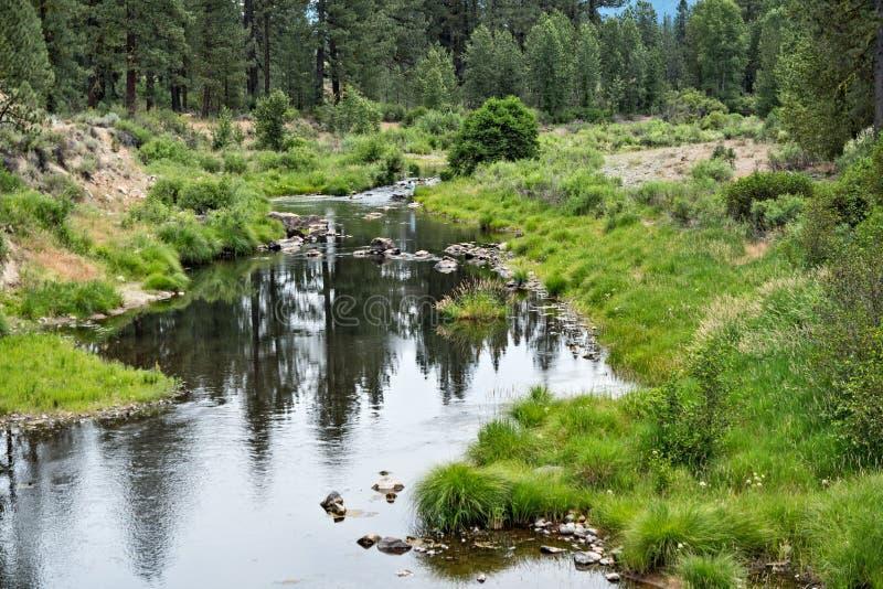 Fourchette moyenne, rivière de plume photo libre de droits
