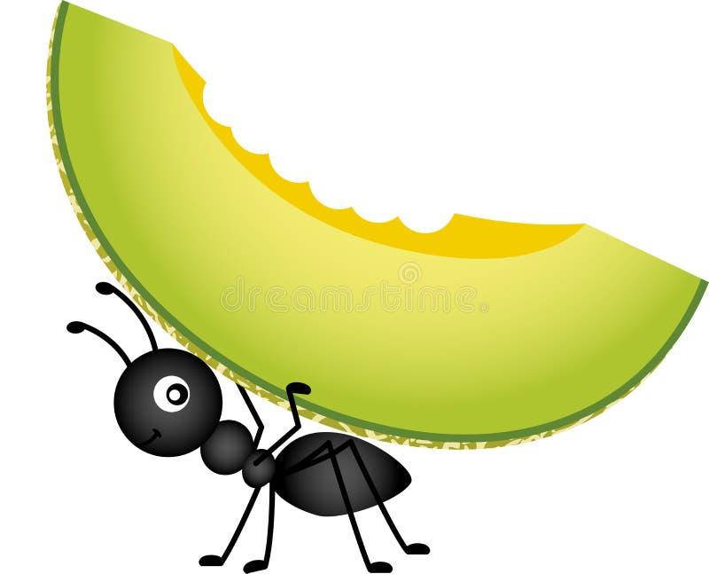 Fourmi portant un melon de cantaloup illustration stock