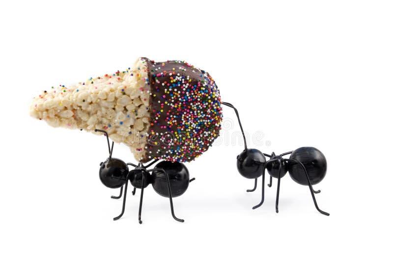Fourmis portant le cône de crême glacée de céréale photos libres de droits