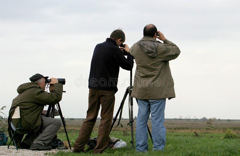 Fowlers are bird watching stock photo