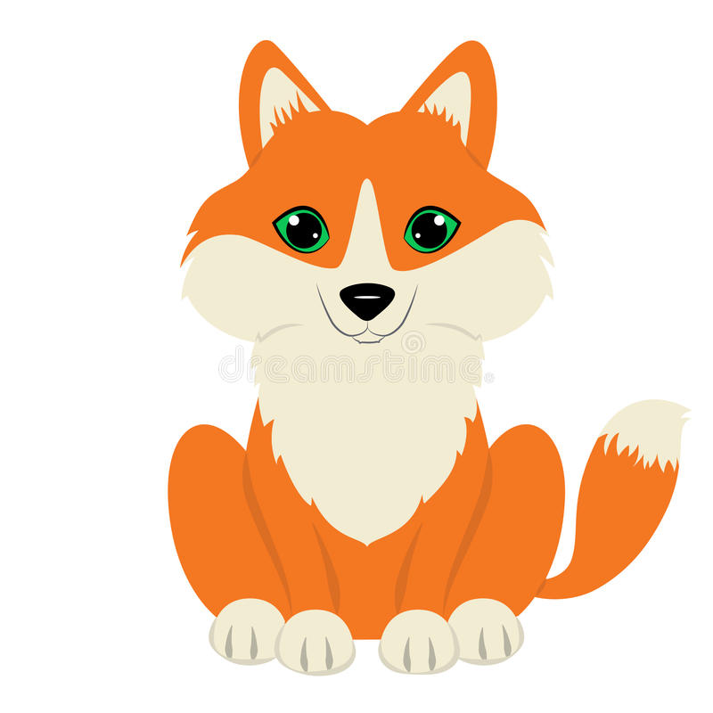 Fox royalty free stock image