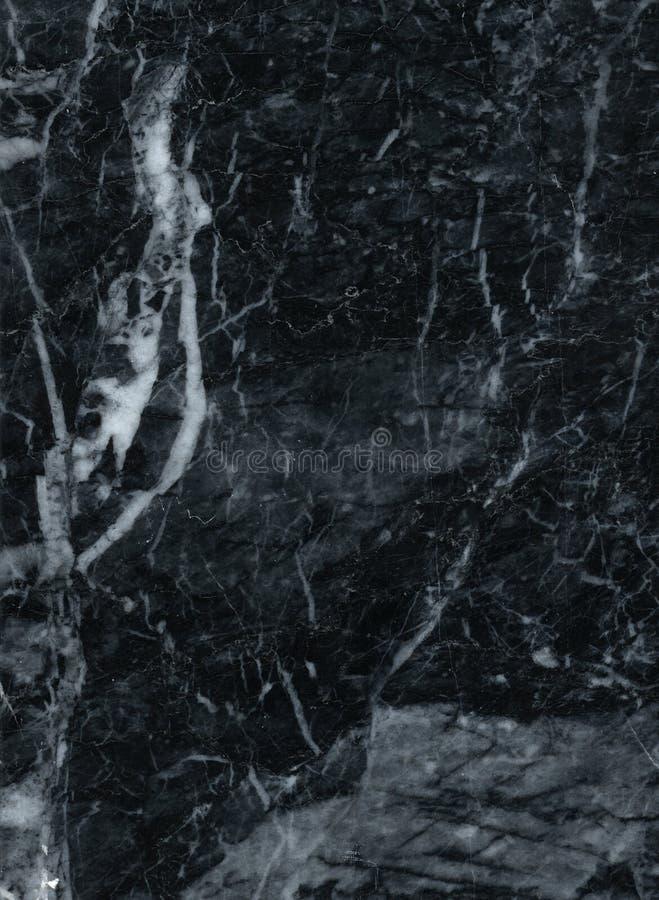 Fox argenté de pierre de marbre de brame images stock