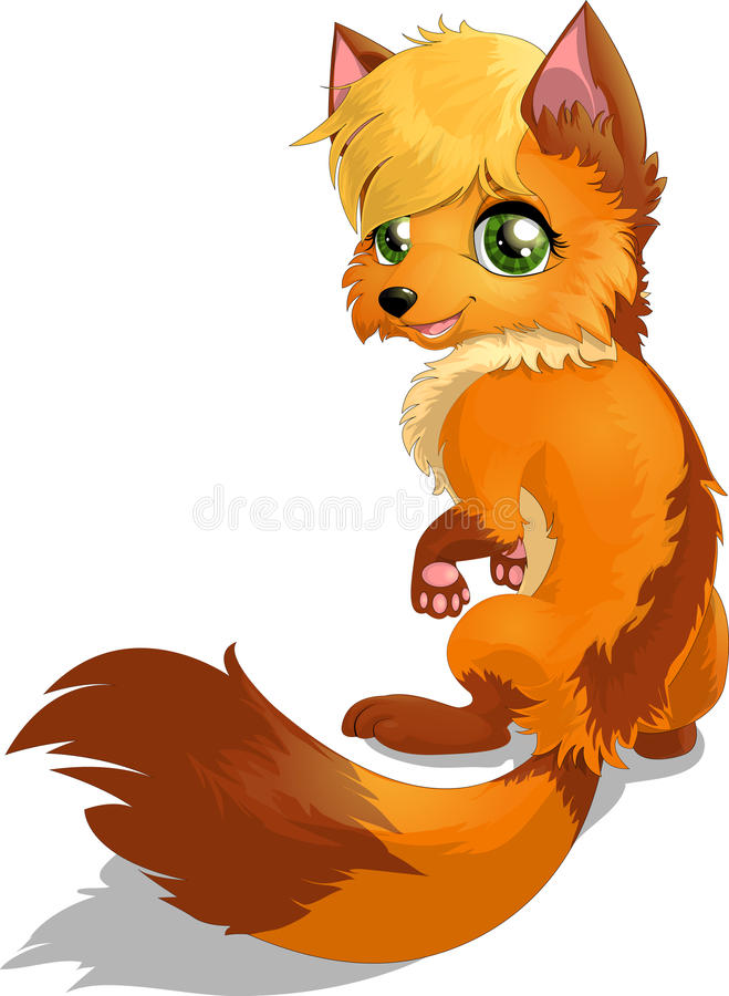 Fox. Beautiful fox drawn on a white background vector illustration