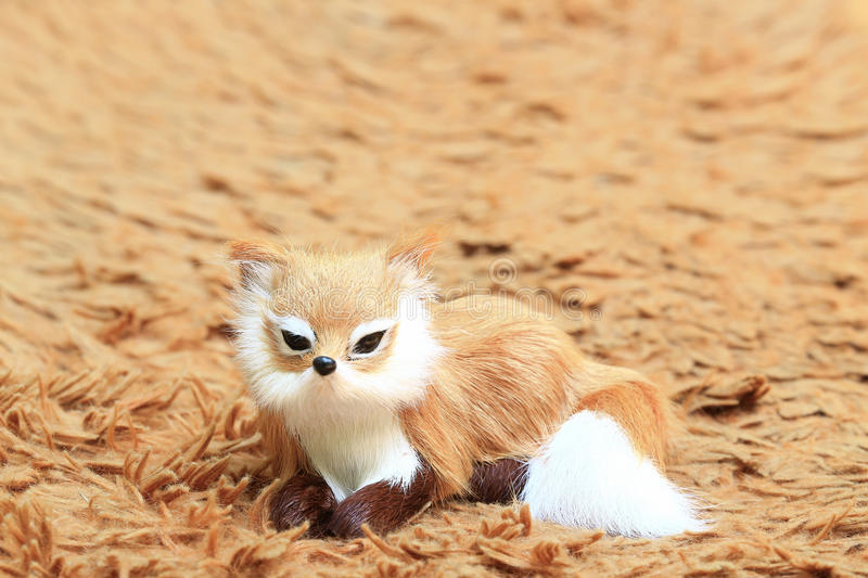 A fox at the carpet. stock photography