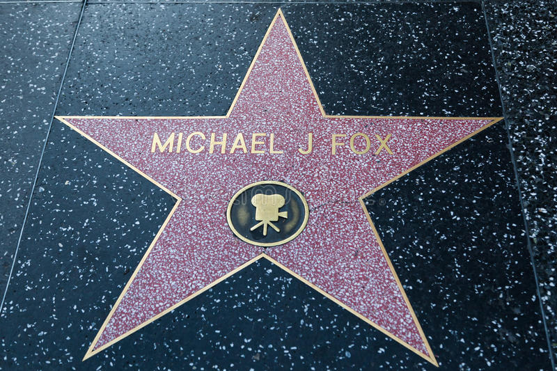 Fox di Michael J fotografie stock libere da diritti