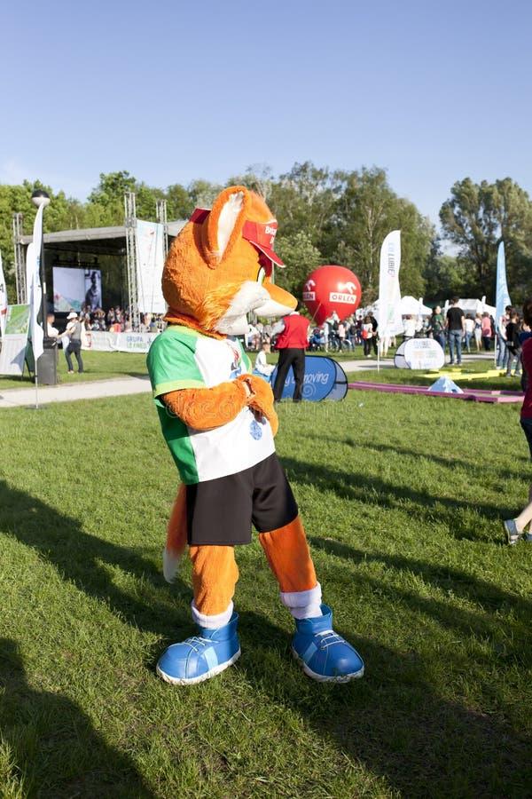 Fox a mascote da olimp?ada que anda no piquenique ol?mpico imagens de stock royalty free