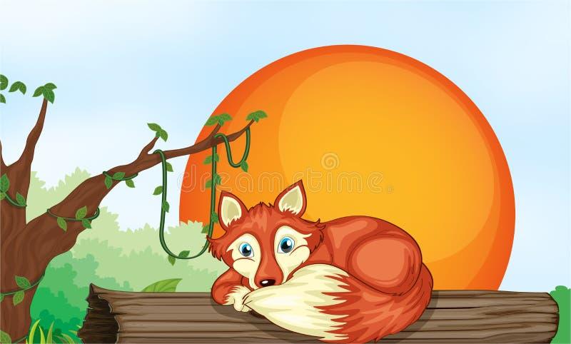 Fox que descansa na madeira ilustração stock