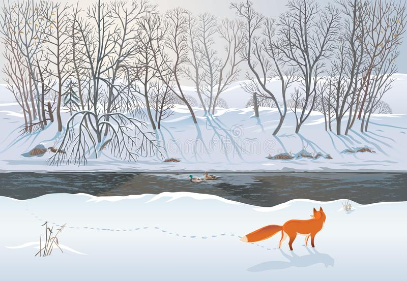 Fox in the winter forest stock illustration