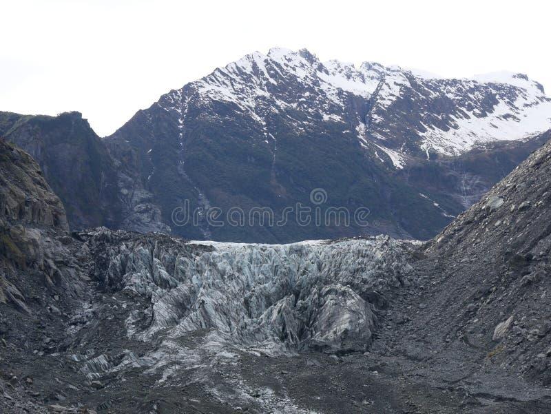Foxglacier lizenzfreies stockbild