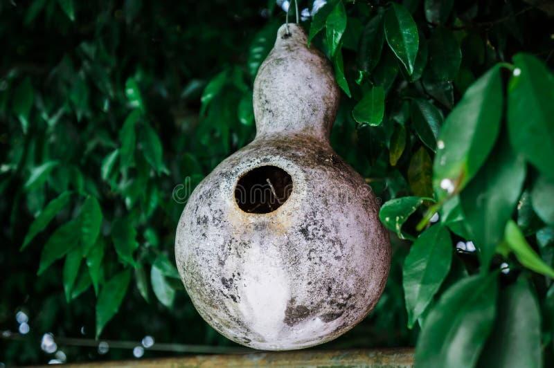 Foxy Birdhouse стоковые изображения rf