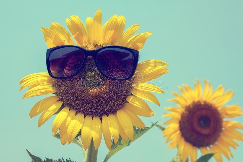 Foyer sélectif sur le verre de soleil, le tournesol et les lunettes de soleil noirs dessus photographie stock libre de droits