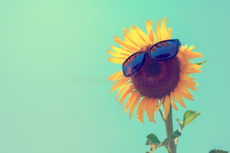 Foyer sélectif sur le verre de soleil, le tournesol et les lunettes de soleil noirs dessus image stock