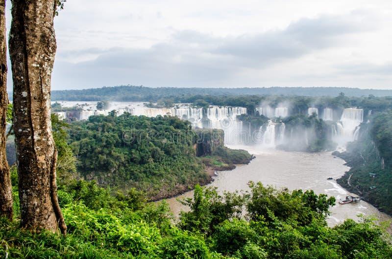 Foz κάνει το iguaçu, Paranà ¡, Βραζιλία - το 30/06/2017: η άποψη Iguazu αφορά την πορεία του ίχνους με τον κορμό ενός δέντρου στοκ φωτογραφία με δικαίωμα ελεύθερης χρήσης