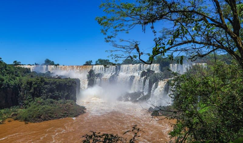 A Foz de Iguaçu no lado de Argentina fotografia de stock