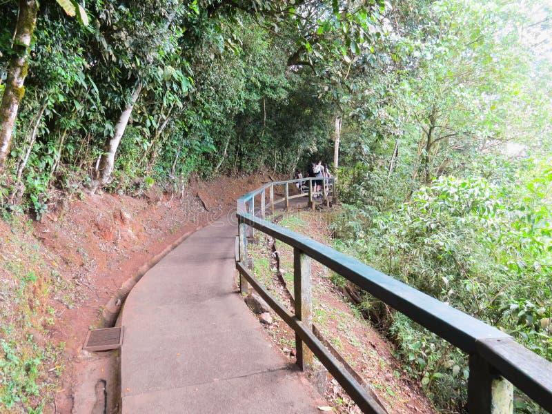 Foz font Iguaçu, Brésil, touristes marchant sur la traînée de l'Iguassu que les automnes se garent photos libres de droits