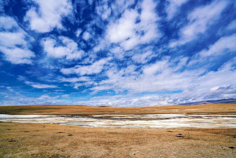Fozen River Blue Sky Yellow Grassland in Bayanbulak  in early Spring royalty free stock photos