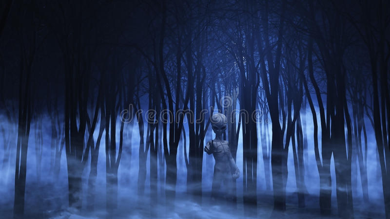 främling 3D i en dimmig skog vektor illustrationer