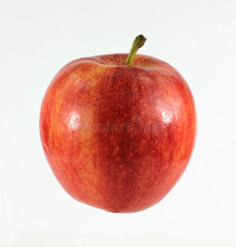 främre galasikt för äpple royaltyfri bild